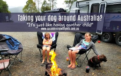 Taking your dog around Australia – it's just like having an extra child!