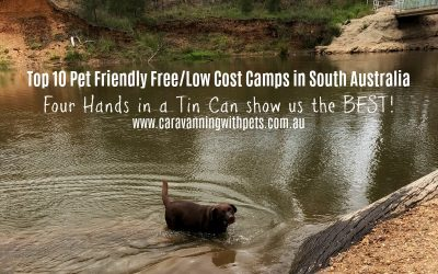 Top 10 Pet Friendly Free/Low Cost Camps in South Australia